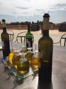 Olive oil and wine tasting in Provence farm