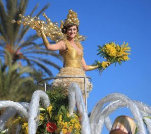Battle of flowers Nice carnival during your private tour of Nice