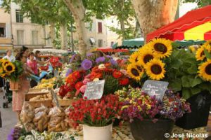 provence tour and the local markets