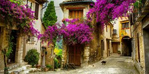 provence tour discover the local heritage